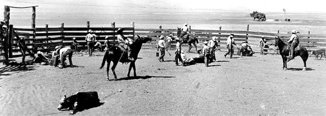 expo vaqueros