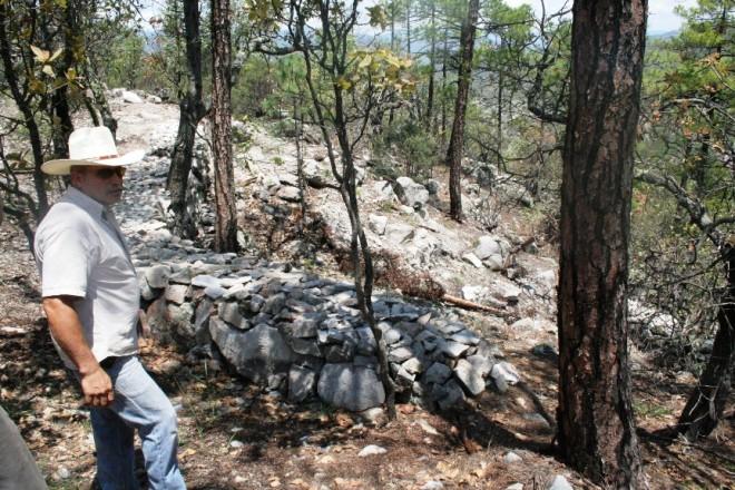 trabajos de reforestacion huápoca (3)